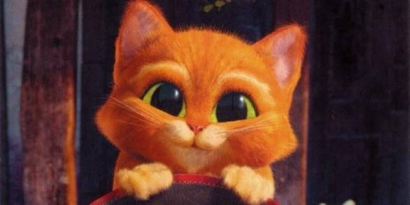Фото маленького кота в сапогах
