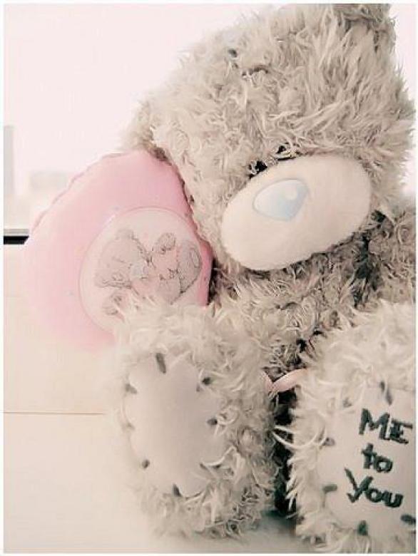 Мишка тедди (блин так мило) .